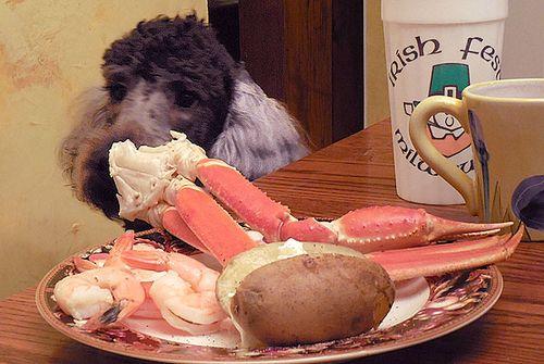 New Years Dinner 4094