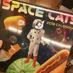 Wilsons 1st Calendar Shoot 5869