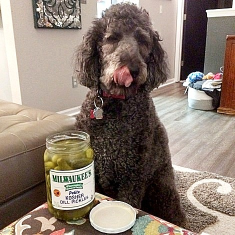 Anchor Celebrates National Pickle Day 6052