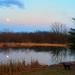 Anchor Howls at the Moon