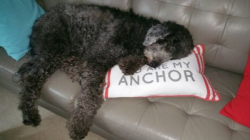 Anchors Favorite Pillow 5323
