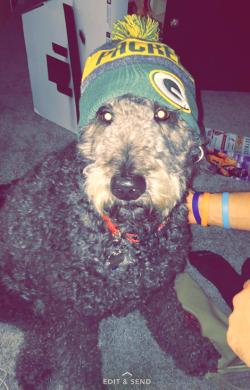No 1 Fan Woof Packers Woof 7878