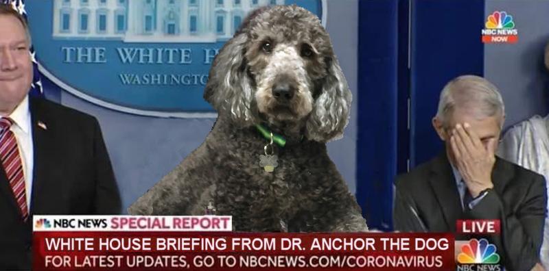 White House Briefing Anchor 2043p