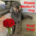 Happy Mother's Day, Woof Woof