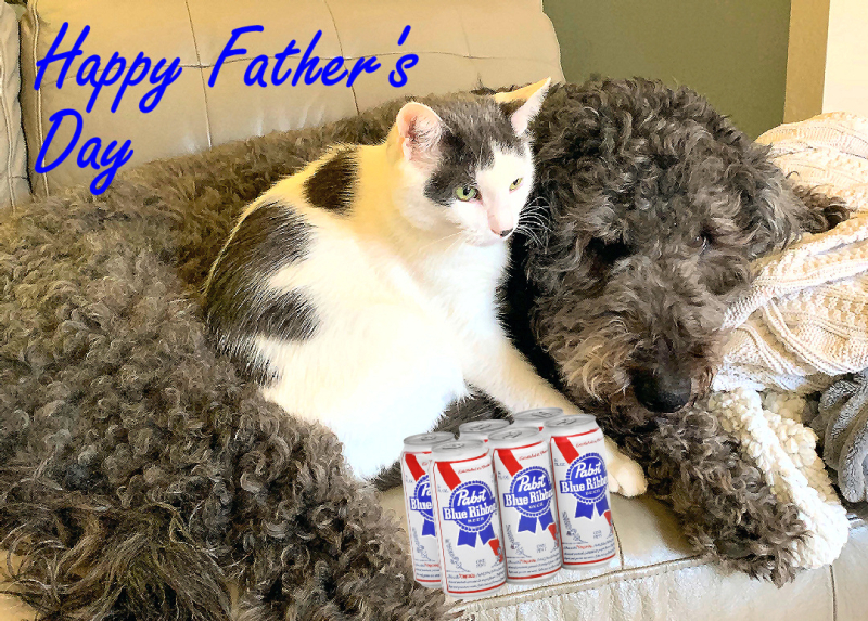 Happy Fathers Day Pabst 8712p