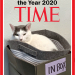 """Congratulations to #WilsonTheCat, """"Office Assistant of the Year 2020."""""""