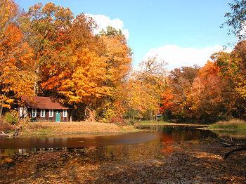 Autumn_cabin_2805