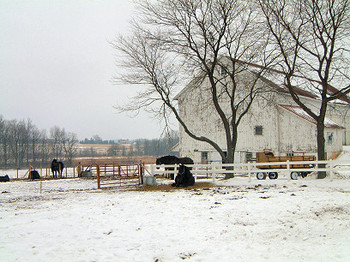 Winter_barn_0094