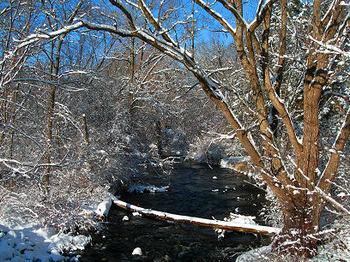 Winter_wonderland_1499