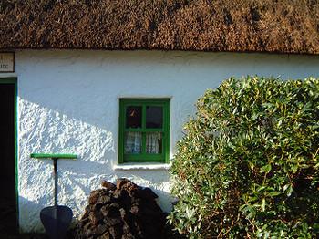 Green_window_0026