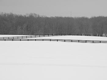 Fences_3