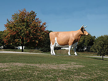 Holy_cow_1581