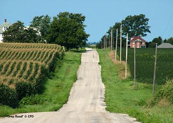 Crop_road_5370